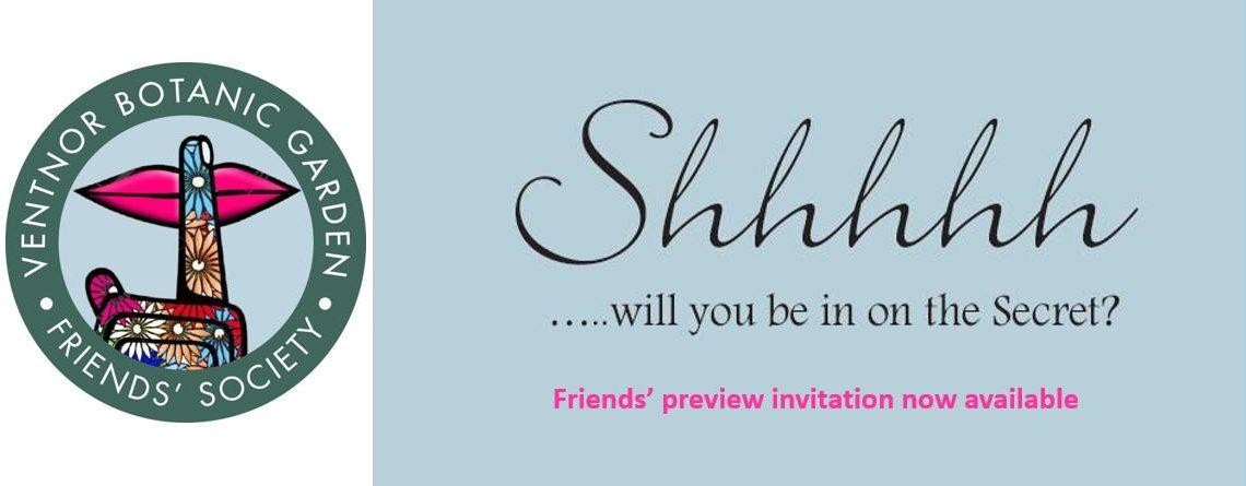 Secret Art Preview Invitation