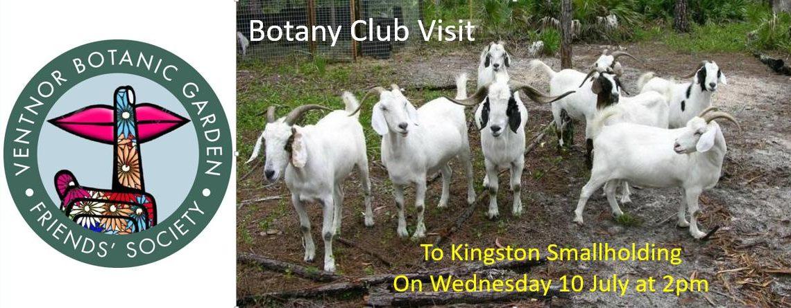Kingston Smallholding