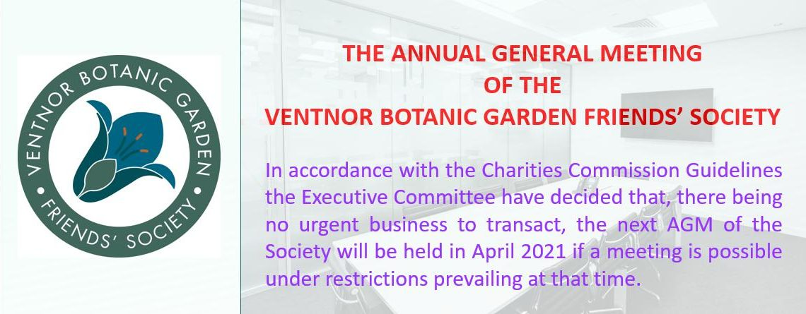 Annual General Meeting Update