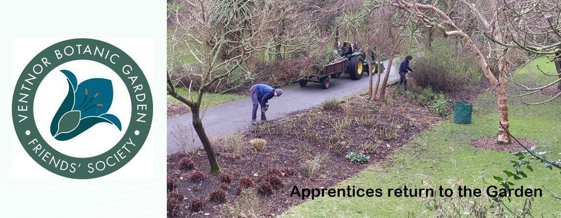 Apprentices Return